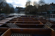 punts rule in Cambridge