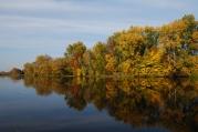 Wilanow Lake